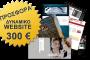 Κατασκευή Δυναμικής Ιστοσελίδας μόνο με 300 €